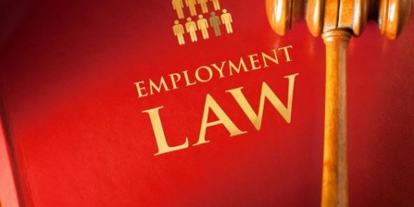Employment Law Red Deer